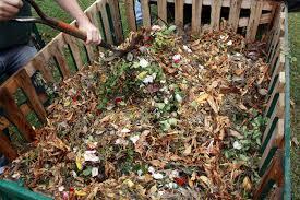 Ramas y hojas, a la compostera!