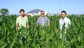 Urdangarin, a cargo del emprendimiento, junto a los agrónomos Ezequiel Weibel y Martín Pinos,